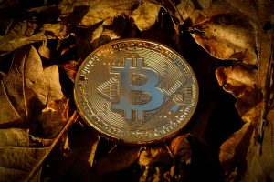 Geld auf Bitcoin Revolution anlegen